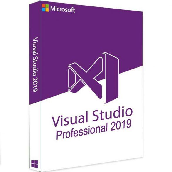 Microsoft Visual Studio Professional 2019 (C5E-01380)