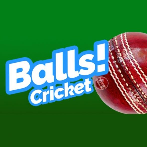 Balls! Virtual Reality Cricket