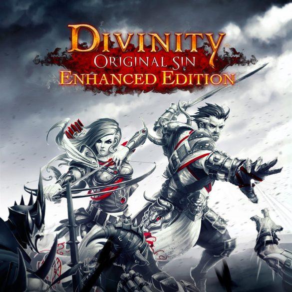 Divinity Original Sin (Enhanced Edition)