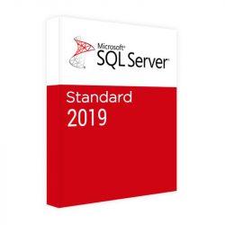 Microsoft SQL Server 2019 Standard (228-11487)