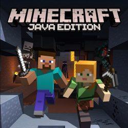 Minecraft (Java Edition)