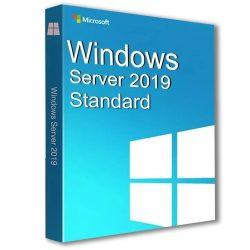 Windows Server Standard 2019 (9EM-00653)
