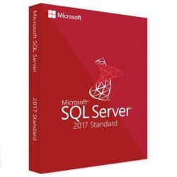 Microsoft SQL Server 2017 Standard (359-06557)