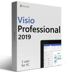 Microsoft Visio Professional 2019 (Költöztethető)